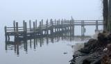 River Fog_7837.jpg