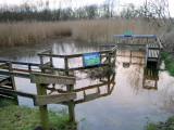 mid_yare_rspb_reserves