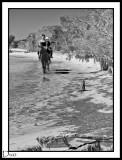 Gentle Jog On The beach.
