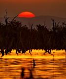 Lake Nuga Nuga Sunset