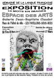 Semaine de la langue francaise 2013