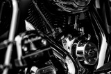 Harley Details