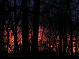 Fiery Fall Sunset