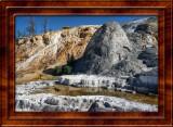July 24 Yellowstone National Park