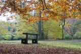 Autumn / Efterår