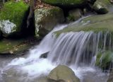 Small Water...Big Impact