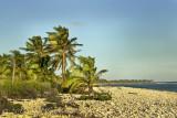 Little Cayman redone©.jpg