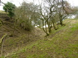 The ringwork ditch