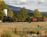 Steam Locomotive on a Fall Day