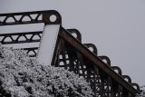 Rust and snow II