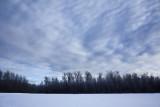 Winter Skies.jpg