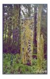 QCI Forest Art.jpg