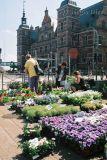 83-Flower market at Helsingor.jpg