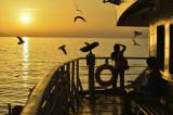 Coucher de soleil sur la Mer de Marmara-0163.jpg