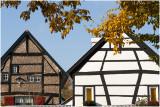 LIMBURG  - waar in het bronsgroen eikenhout ....
