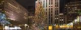 Rockefeller Center Cristmas Tree