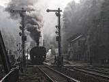 40 Years AMTF - Association des Musée et Tourisme Ferroviaires a.s.b.l.