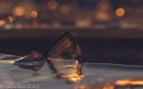 Glace_Ice shape