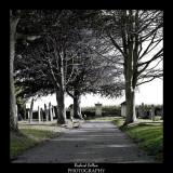Graveyard at Westmount