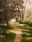 Beryl's Path