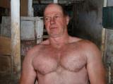 a hot dad working horse barn stalls.jpg