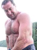 wet daddy bear skiing lake swimming.jpg