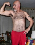 hairy daddy tattoos biker bear.jpg