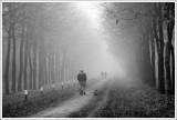 Nature & Rural Life  2012
