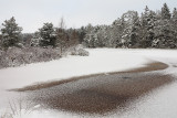 Vejlbo Mose winter 03