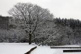 Almindsø winter 03
