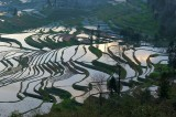 Yuanyang Rice Terraces 元陽梯田