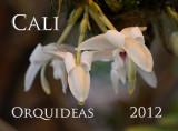 Cali Orquideas 2012