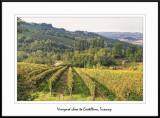 Tuscany - Castellina