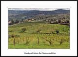 Tuscany - Greve