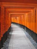 Endless torii gates at the Fushimi Inari Shrine