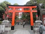 Torii gate at the Fushimi Inari Shrine