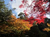 Autumn colours in the eastern hills, Kyoto