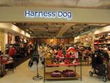 Kyoto Yodobashi Department Store, Dog Emporium!!!