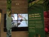 Interpretive Centre, Botanical Gardens