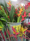Tropical flowers for sale at Rusty's Market