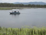 Lake Barrine,  Atherton Tablelands