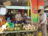 Coconuts! Rusty's Market, Cairns