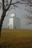 Osage SK - Fogged In