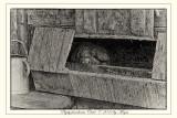 Pigsty farmhouse Oevel (Bokrijk - Belgium)