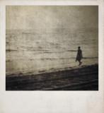 Polaroid7366