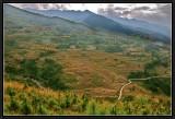 Eastern Bhutan Landscape.