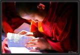 Concentrated. Kyaung Shwe Yaunghwe. Nyaungshwe.