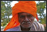 Portrait of a Farmer - Pushkar.