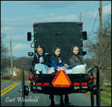 Mennonite girls ride back of buggy in Lancaster Co, Pa.