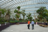Inside Flower Dome